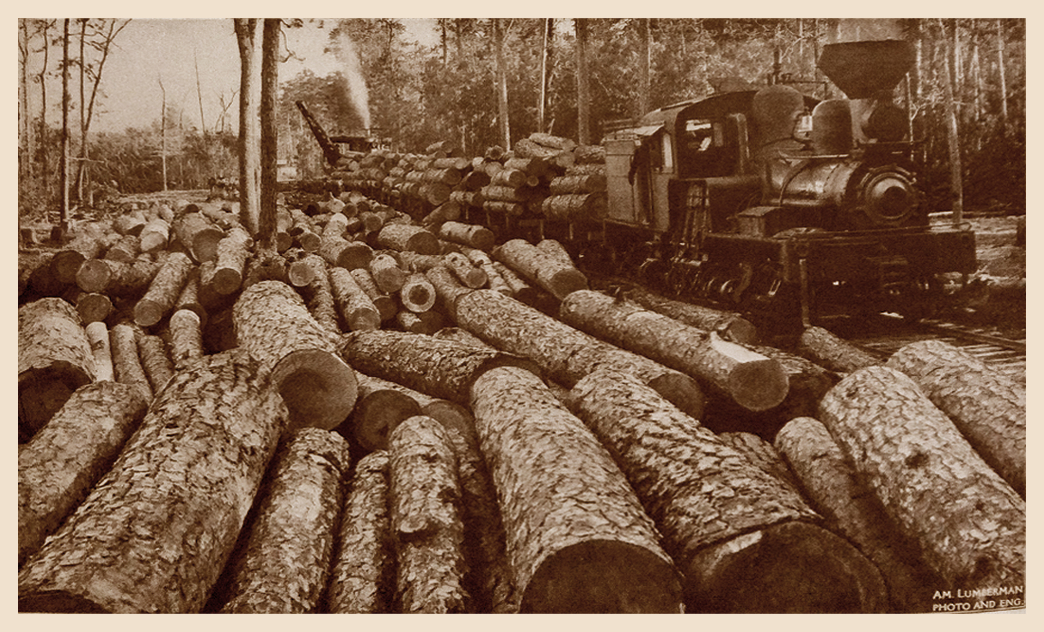 Logs and Train near Bienville (1909)
