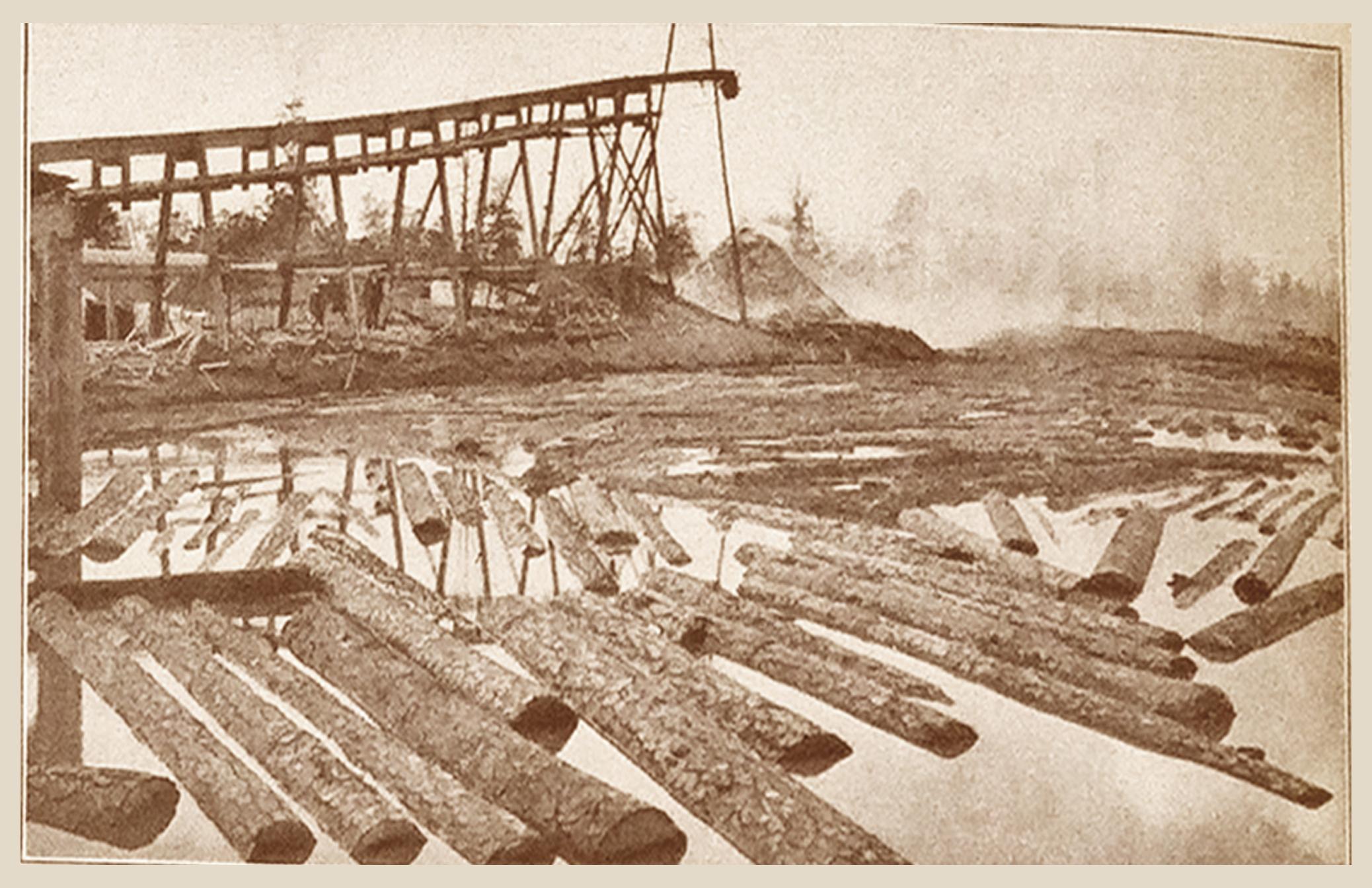 Log Loader at Work (1909)