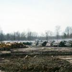 Wet Log Yard