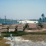 Plywood Plant Log Yard 1