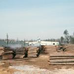 Plywood Plant Log Yard 3