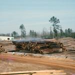Plywood Plant Log Yard 7