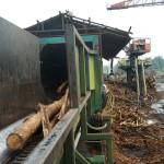 Logs entering debarker