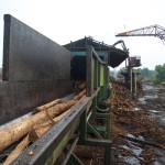 Debarked logs exiting long debarker