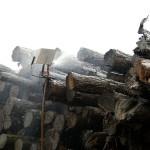 Wet logs in stacks