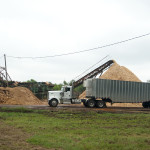 Truck and chip pile