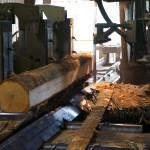 Head rig making initial cuts on log